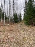 Lots and Land for Sale in Mercer, Wisconsin $105,000