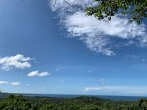 Lots and Land for Sale in Playa Grande, Guanacaste $250,000