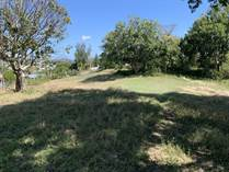 Lots and Land Sold in Bo. Susua Alta , Yauco, Puerto Rico $75,000