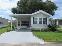 Homes for Sale in Majestic Oaks, Zephyrhills, Florida $39,500