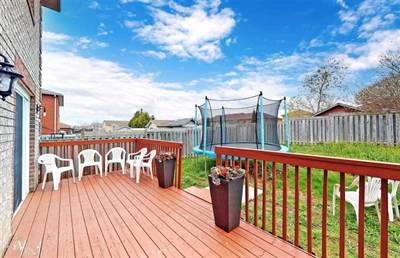 67 Clute Cres