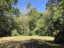 Lots and Land for Sale in Uvita, Puntarenas $65,000
