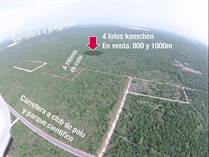 Lots and Land for Sale in Komchen, Merida, Yucatan $14,999