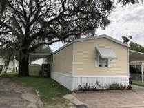 Homes for Sale in Lamplighter On The River, Tampa, Florida $30,000