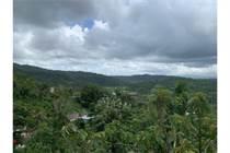Homes for Sale in Bo. San Antonio, Caguas, Puerto Rico $225,000