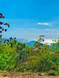 Lots and Land for Sale in Palatine Hills, 00677, Puerto Rico $190,000