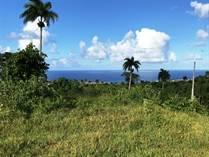 Lots and Land for Sale in Cabrera, Maria Trinidad Sanchez $299,000