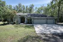 Homes for Sale in Unnamed Areas, Brooksville, Florida $405,000