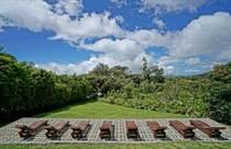 Commercial Real Estate for Sale in Monteverde, Puntarenas $38,000,000