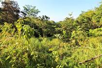 Lots and Land for Sale in Ojochal, Puntarenas $60,000