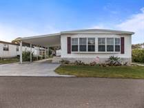Homes for Sale in Blue Jay Mobile Home Park, Dade City, Florida $15,000