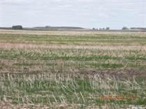 Farms and Acreages for Sale in Saskatchewan, Mccraney Rm No. 282, Saskatchewan $256,800