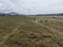 Lots and Land for Sale in Naivasha KES1,300,000