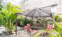 Homes for Rent/Lease in calle 6, Playa del Carmen, Quintana Roo $450 monthly