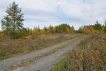 Lots and Land for Sale in Rusagonis, New Brunswick $3,900
