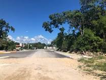 Lots and Land for Sale in Region 7, Tulum, Quintana Roo $220,000