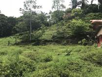 Lots and Land for Sale in Uvita, Puntarenas $40,000
