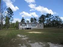 Homes for Sale in Wewahitchka, Florida $118,000