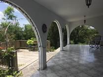 Homes for Sale in Bo. Centro, Moca, Puerto Rico $210,000