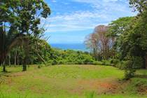 Lots and Land for Sale in Dominicalito, Puntarenas $495,000