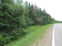 Homes for Sale in Milltown Cross, Montague, Prince Edward Island $19,900