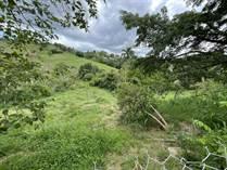 Lots and Land for Sale in Pueblo Ward, RINCON, Puerto Rico $95,000