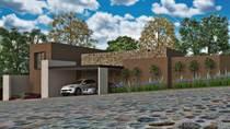 Homes for Sale in Don Diego, San Miguel de Allende, Guanajuato $350,000