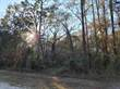 Lots and Land for Sale in Lee, Florida $8,500