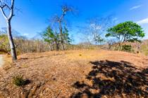Lots and Land for Sale in Matapalo Beach , Guanacaste $49,000