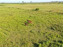 Farms and Acreages for Sale in Orange Walk , Orange Walk $937,500