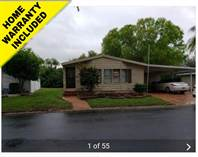 Homes for Sale in Riverside Club, Ruskin, Florida $43,000