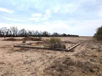 Lots and Land for Sale in San Quintin, Baja California $47,000