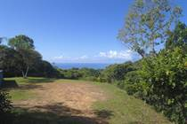 Lots and Land for Sale in Dominical, Puntarenas $300,000