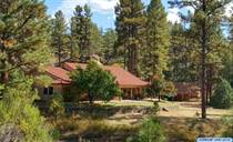 Homes for Sale in Lake Roberts, Silver City, New Mexico $539,000