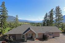 Homes for Sale in Tappen, British Columbia $659,000