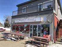Commercial Real Estate for Sale in Adelaide/Churchill, Saskatoon, Saskatchewan $139,000