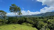 Farms and Acreages for Sale in Tinamastes, Puntarenas $199,000