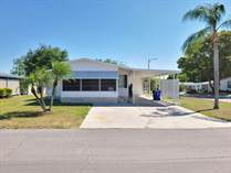 Homes for Sale in Foxwood Village, Lakeland, Florida $39,900