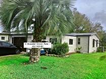 Homes for Sale in The Meadows, Plant City, Florida $19,900