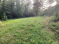 Lots and Land for Sale in Marion, North Carolina $199,000