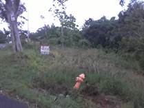 Lots and Land for Sale in Quebrada Grande, Mayaguez, Puerto Rico $75,000