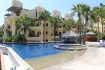 Condos for Rent/Lease in San Jose del Cabo, Baja California Sur $80 daily