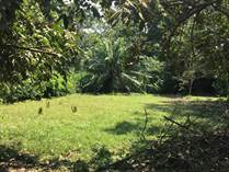 Lots and Land for Sale in Bahia Ballena, Puntarenas $95,000