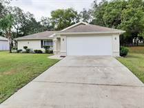 Homes for Sale in Spring Hill, Florida $149,900