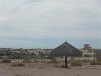 Lots and Land for Sale in Sonora, Puerto Penasco, Sonora $32,000