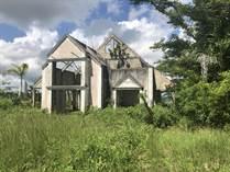 Homes for Sale in Bo. Sud, Cidra, Puerto Rico $50,000