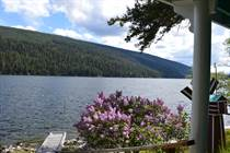 Homes for Sale in LOON LAKE, British Columbia $369,900