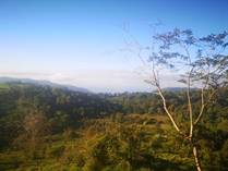 Farms and Acreages for Sale in Uvita, Puntarenas $600,000