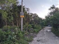 Lots and Land for Sale in Cancun, Quintana Roo $5,900,000