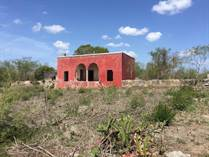 Homes for Sale in Motul Municipality, UITZIL, Yucatan $65,250,000